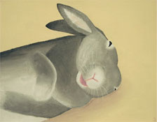 the laughing rabbit